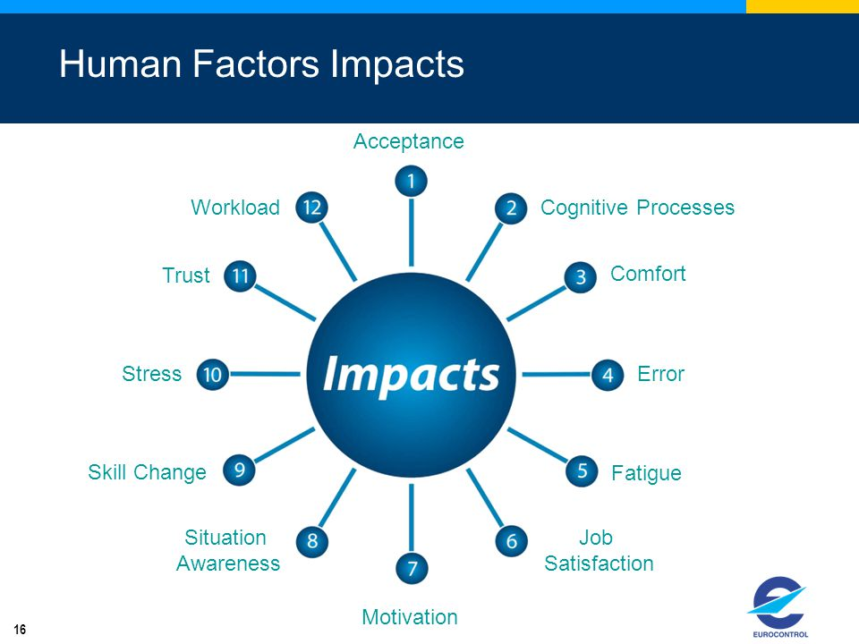 Human Factors Impacts Acceptance Workload Cognitive Processes Trust