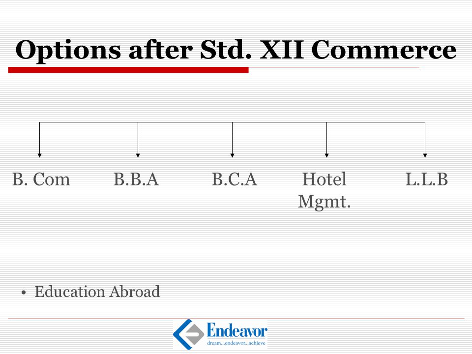 Options after Std. XII Commerce
