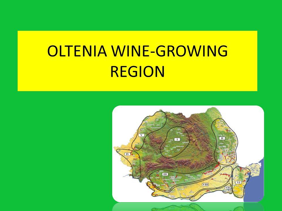 Oltenia wine-growing region