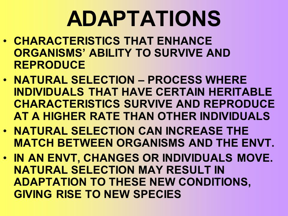 ADAPTATIONS CHARACTERISTICS THAT ENHANCE ORGANISMS' ABILITY TO SURVIVE AND REPRODUCE.