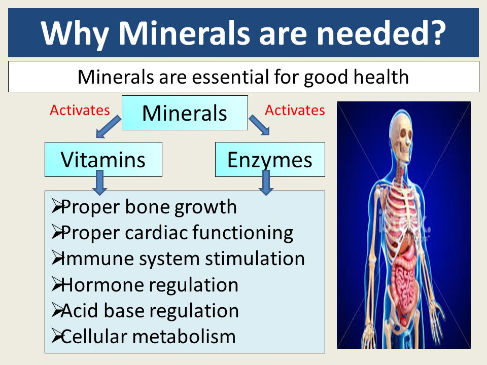 Why Minerals are needed