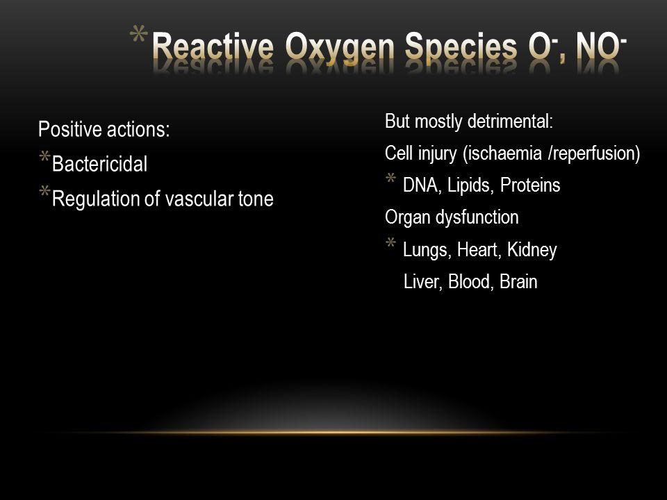 Reactive Oxygen Species O-, NO-