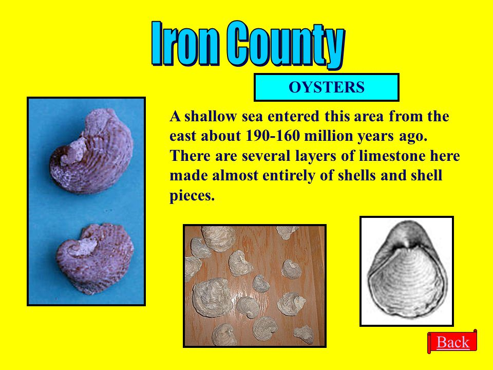 Iron County OYSTERS.