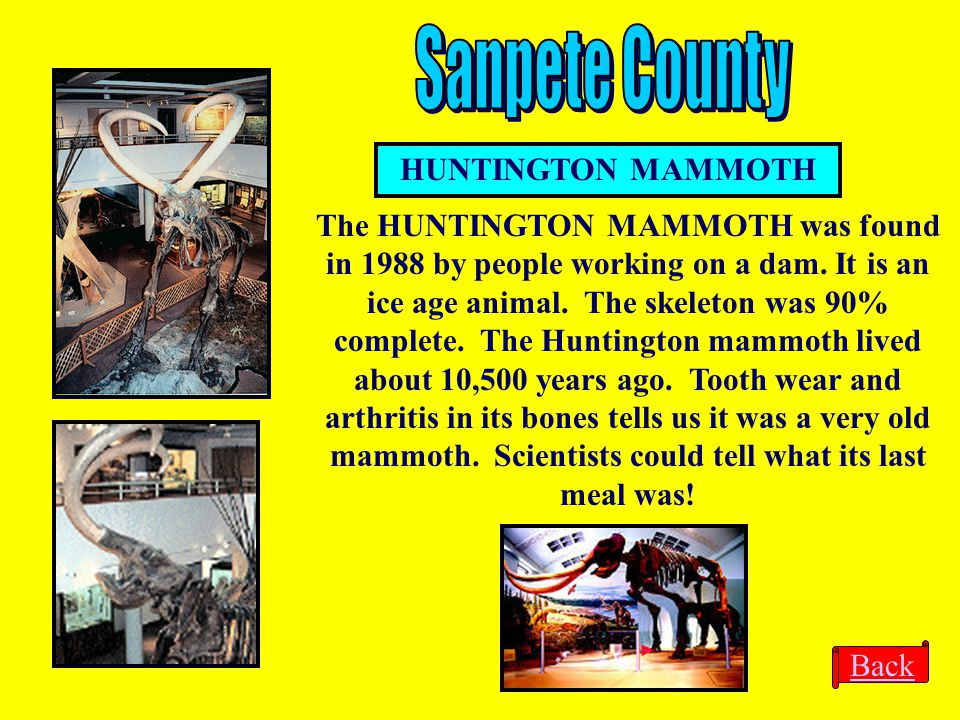 Sanpete County HUNTINGTON MAMMOTH
