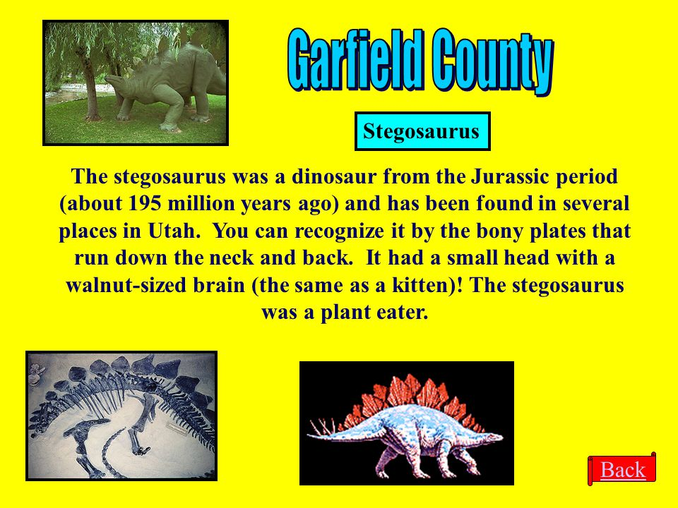 Garfield County Stegosaurus