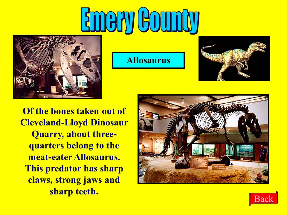 Emery County Allosaurus