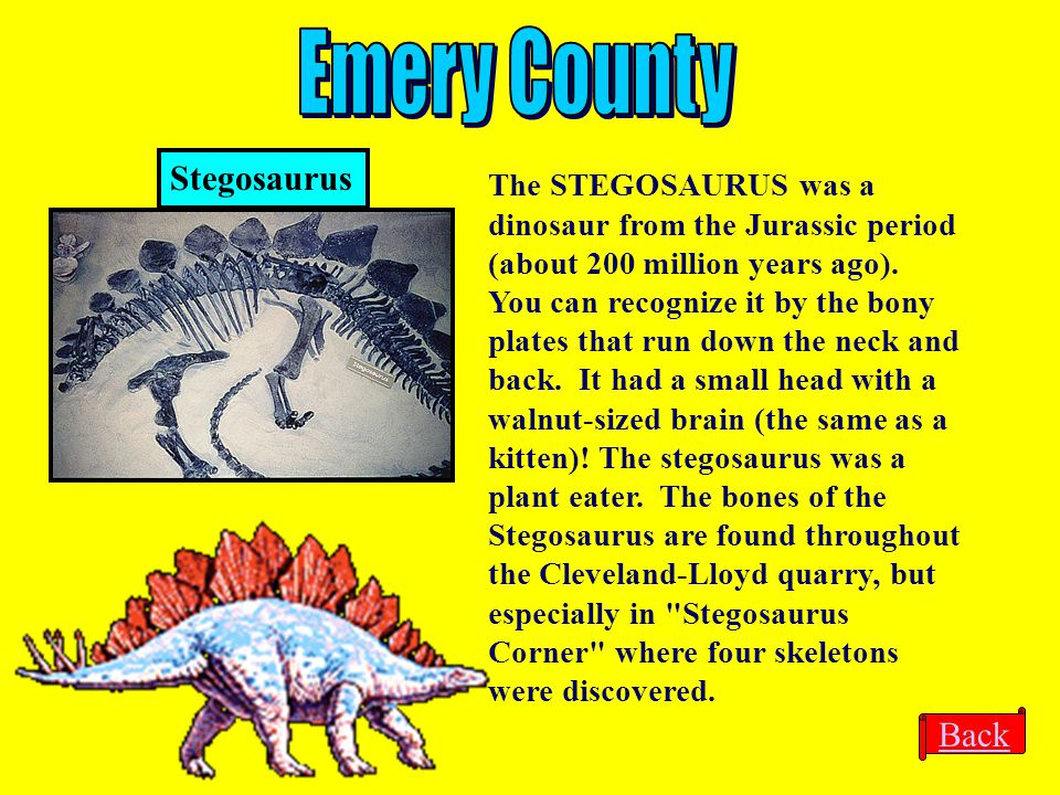 Emery County Stegosaurus Back