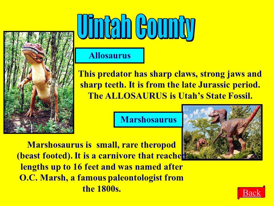 Uintah County Allosaurus
