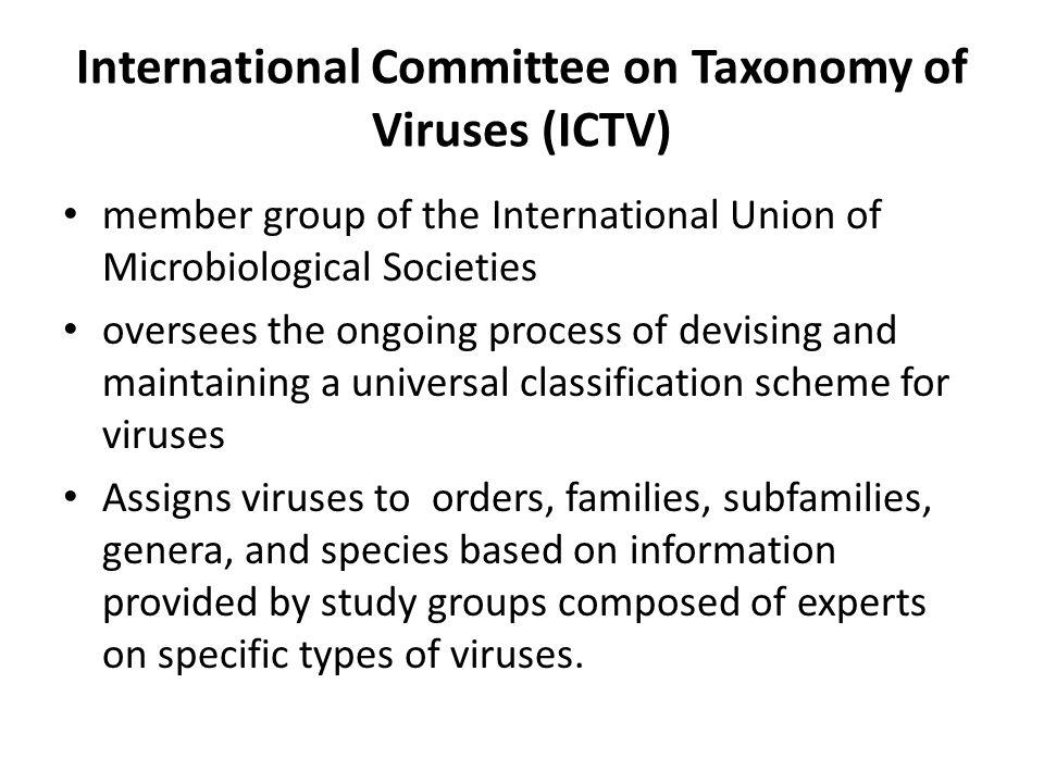 International Committee on Taxonomy of Viruses (ICTV)