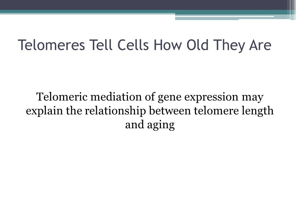 Telomeres Tell Cells How Old They Are