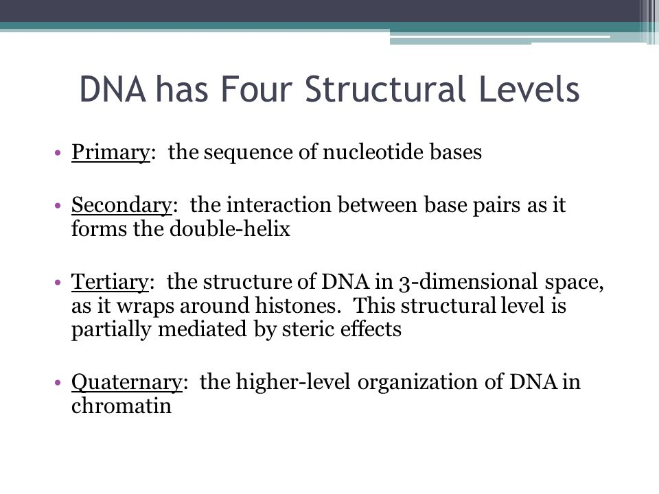 DNA has Four Structural Levels
