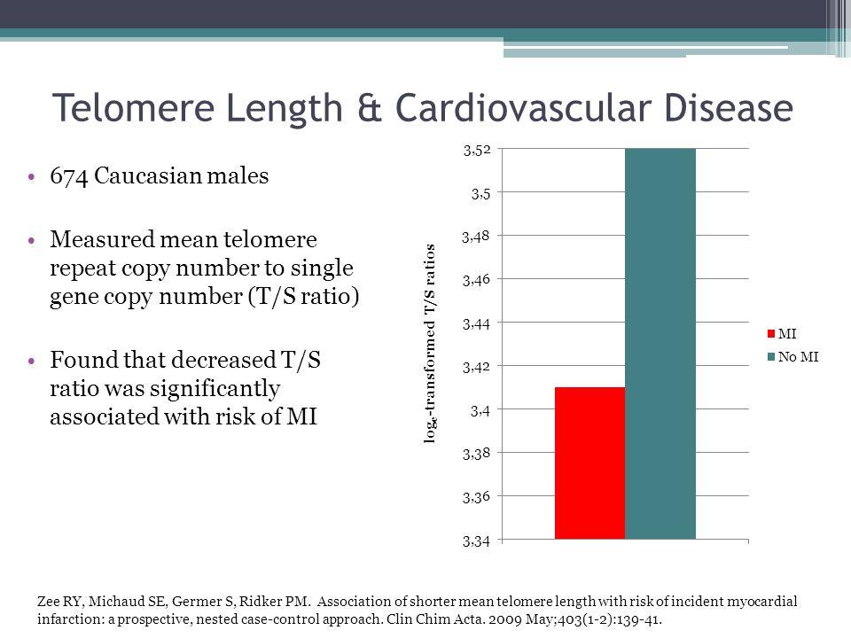 Telomere Length & Cardiovascular Disease
