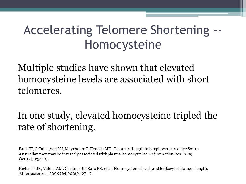 Accelerating Telomere Shortening -- Homocysteine