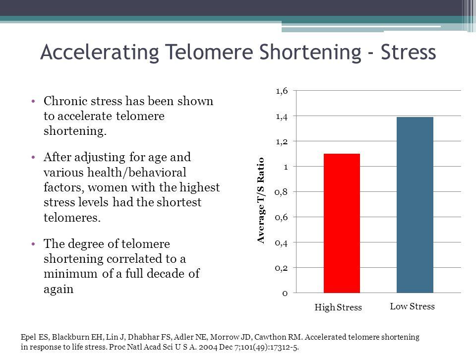 Accelerating Telomere Shortening - Stress