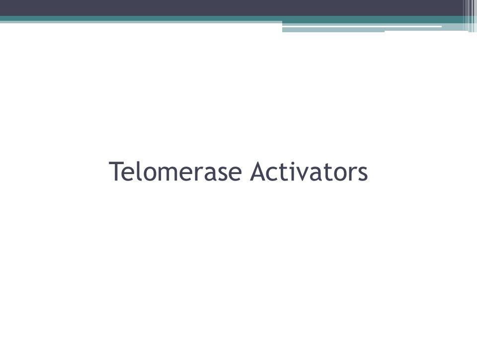 Telomerase Activators