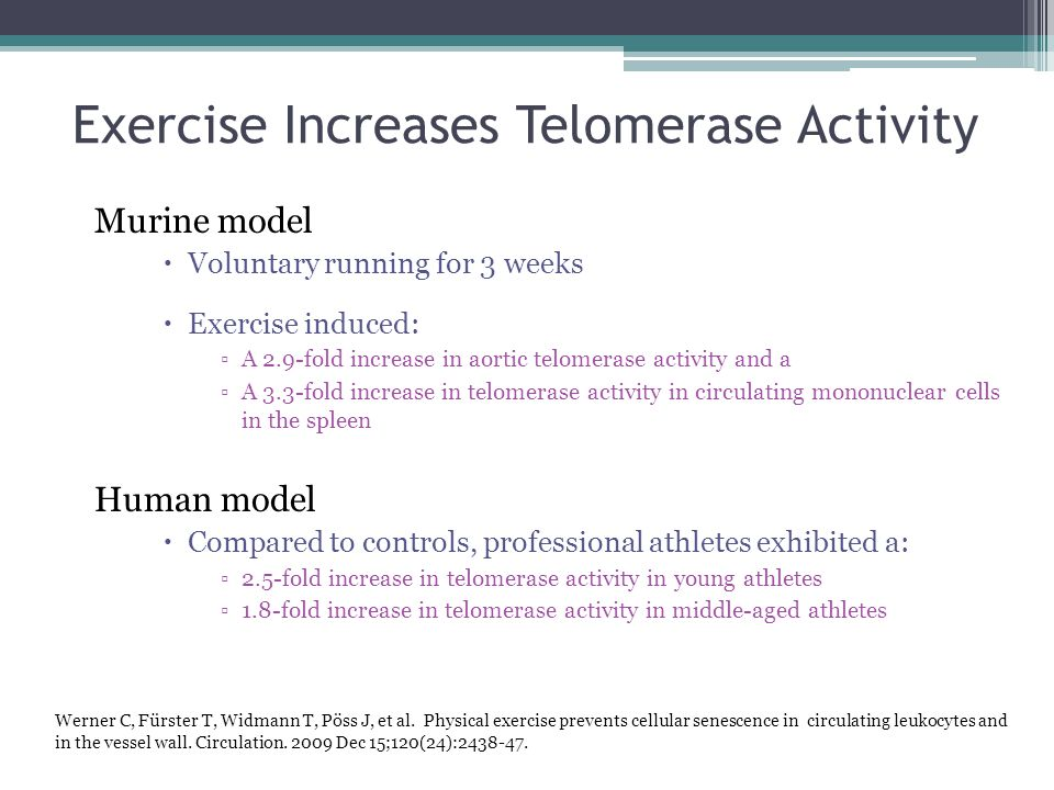 Exercise Increases Telomerase Activity