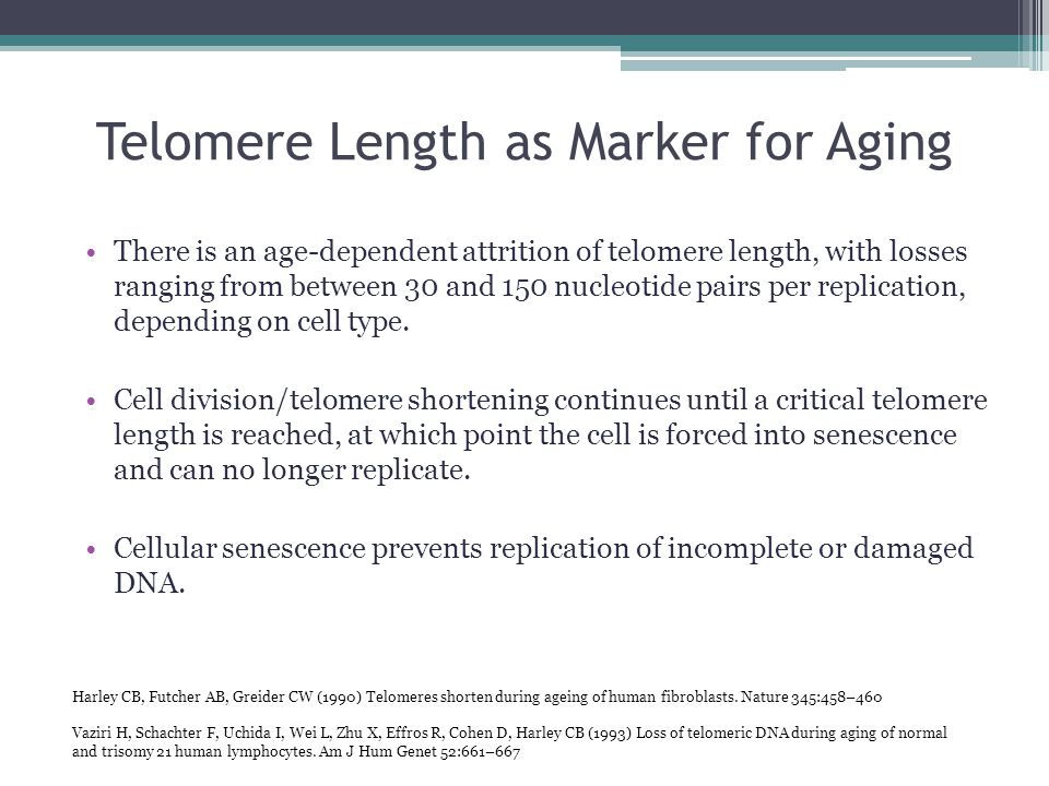 Telomere Length as Marker for Aging