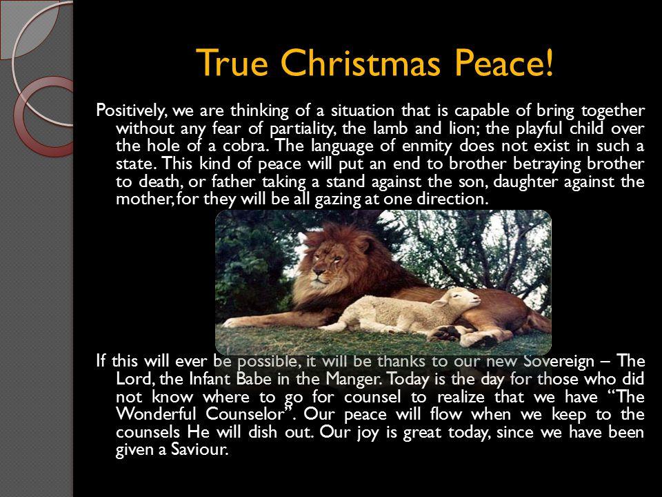 True Christmas Peace!