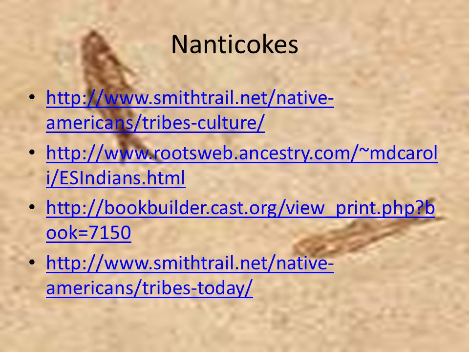 Nanticokes http://www.smithtrail.net/native-americans/tribes-culture/