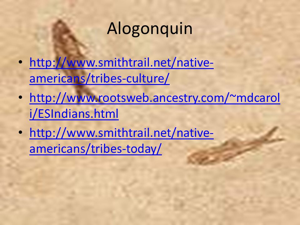 Alogonquin http://www.smithtrail.net/native-americans/tribes-culture/