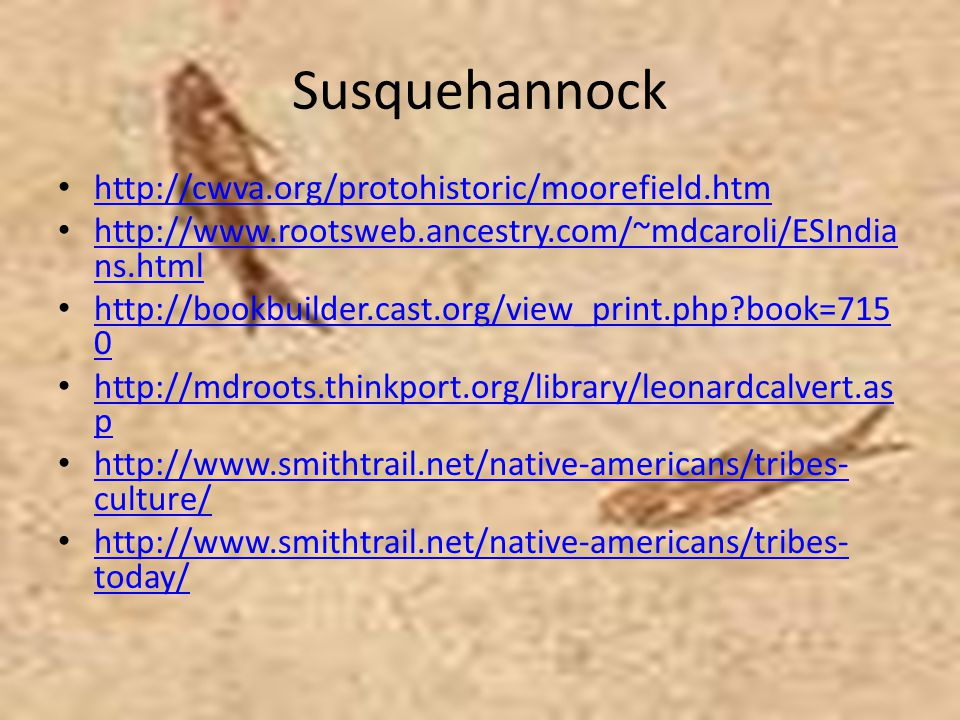 Susquehannock http://cwva.org/protohistoric/moorefield.htm