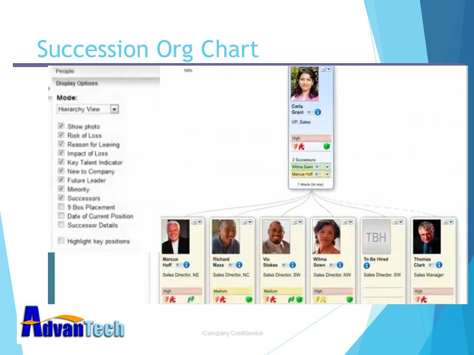 Succession Org Chart