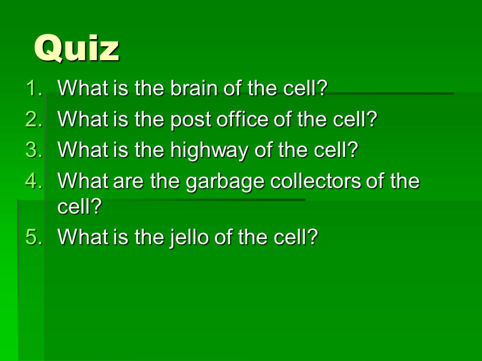 Quiz What is the brain of the cell