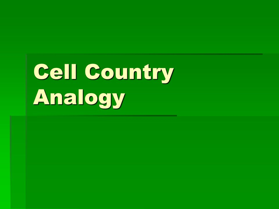Cell Country Analogy
