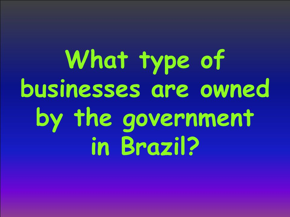 What type of businesses are owned by the government in Brazil