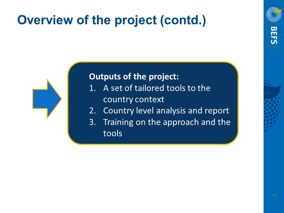 Overview of the project (contd.)