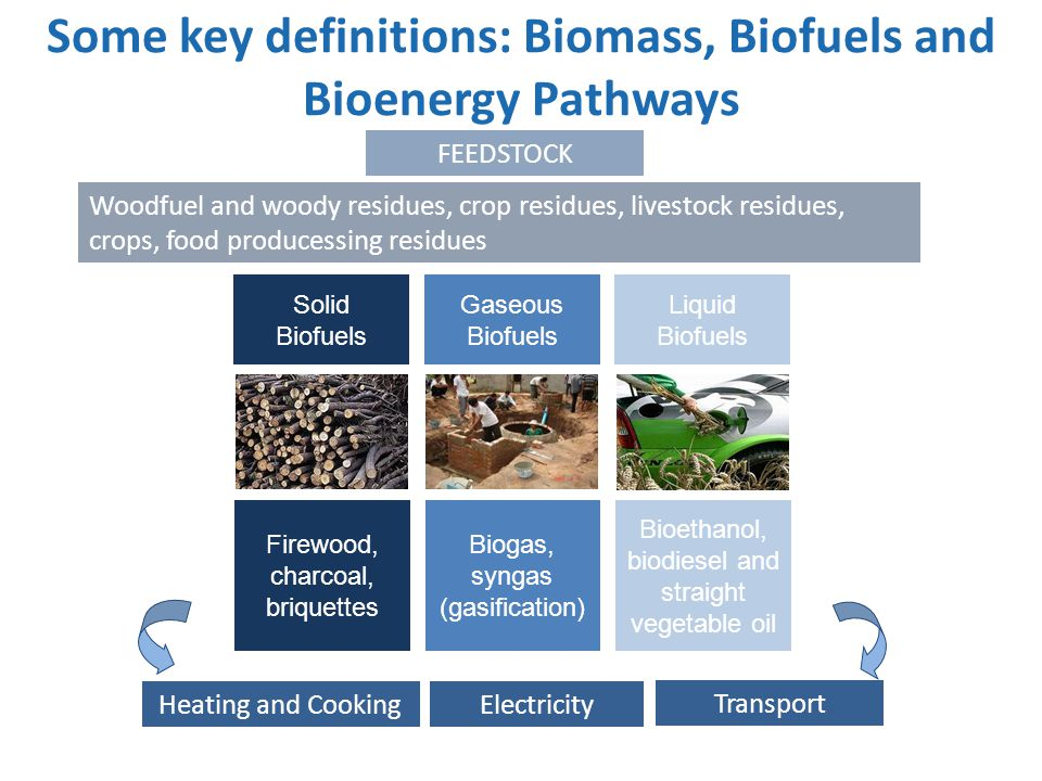 Some key definitions: Biomass, Biofuels and Bioenergy Pathways