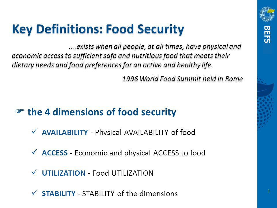  the 4 dimensions of food security