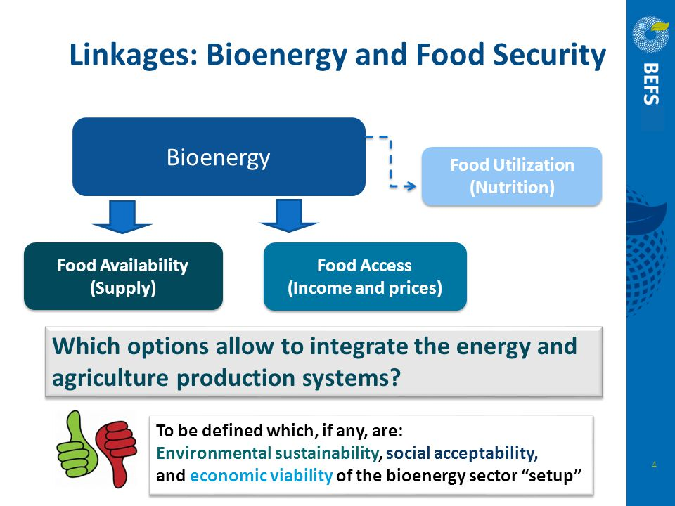 Linkages: Bioenergy and Food Security