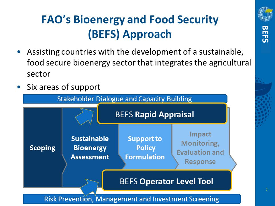 FAO's Bioenergy and Food Security (BEFS) Approach