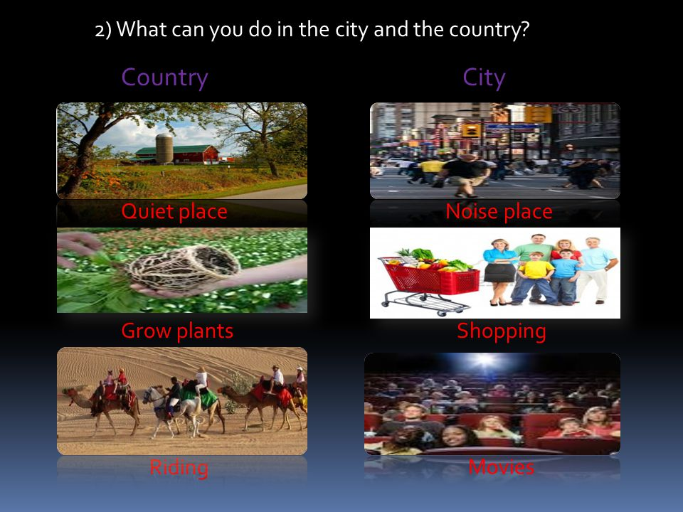 Country City 2) What can you do in the city and the country