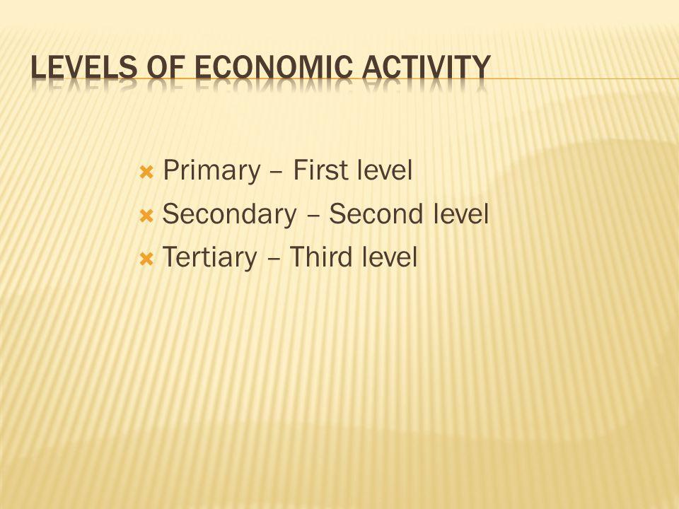 Levels of Economic Activity