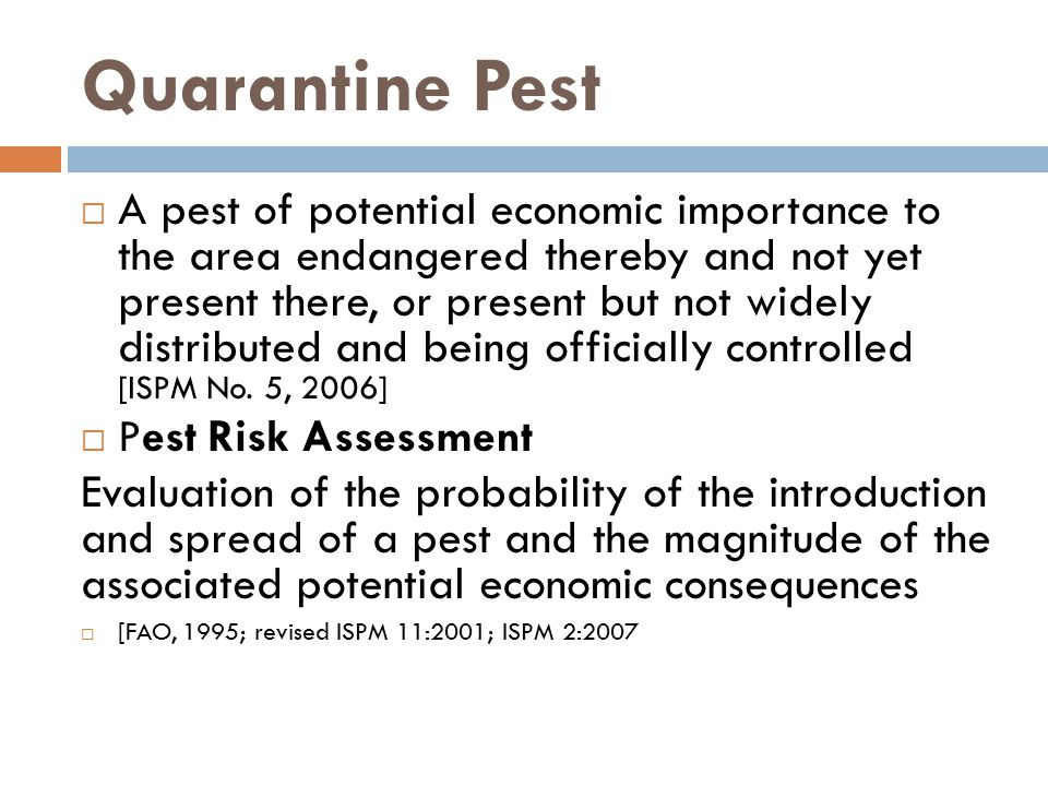 Quarantine Pest