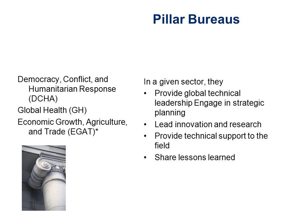 Pillar Bureaus Democracy, Conflict, and Humanitarian Response (DCHA)