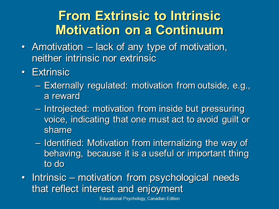 From Extrinsic to Intrinsic Motivation on a Continuum