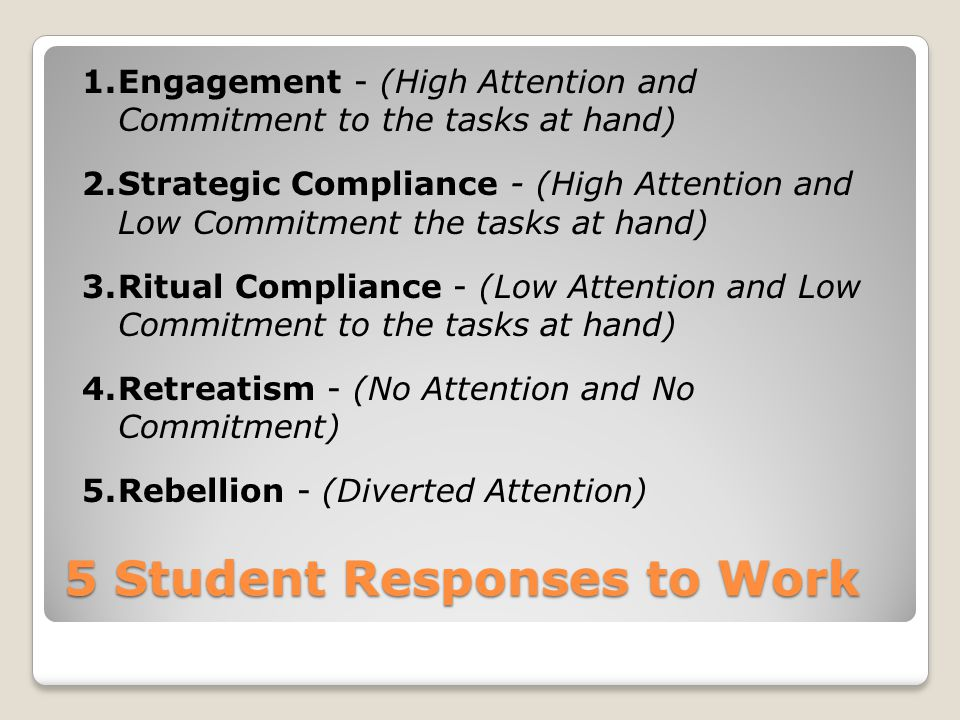 5 Student Responses to Work
