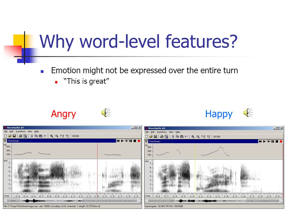 Why word-level features