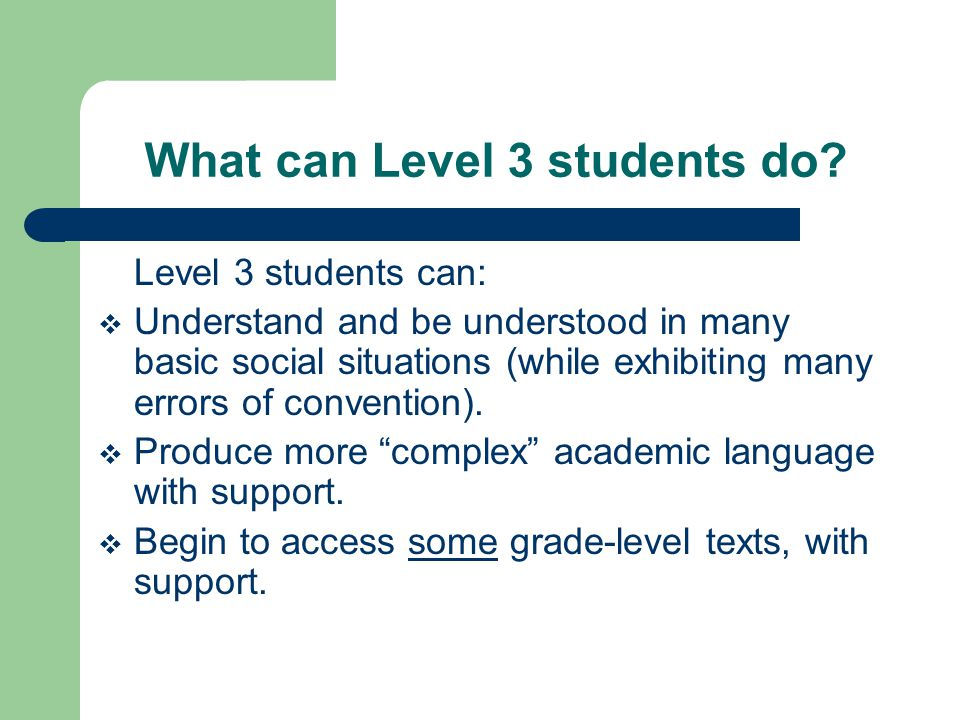 What can Level 3 students do