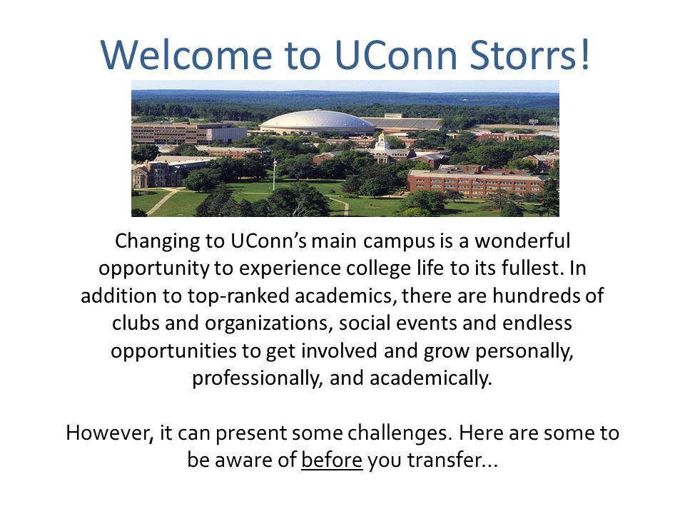 Welcome to UConn Storrs!