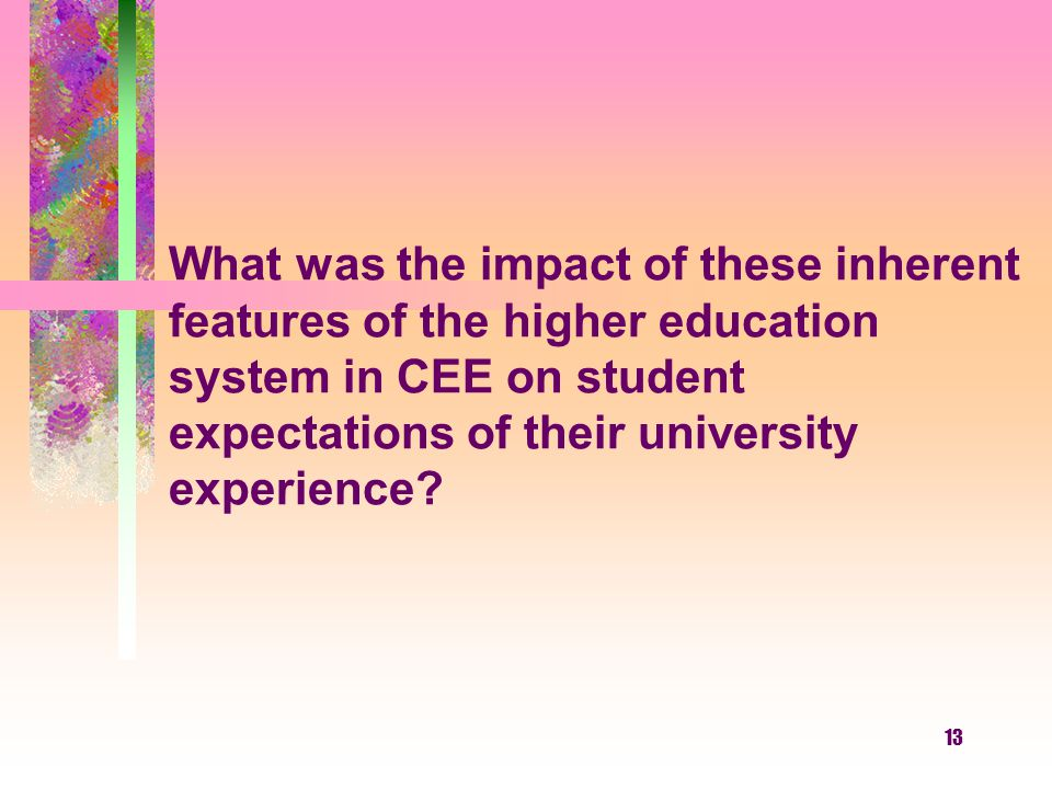 What was the impact of these inherent features of the higher education system in CEE on student expectations of their university experience