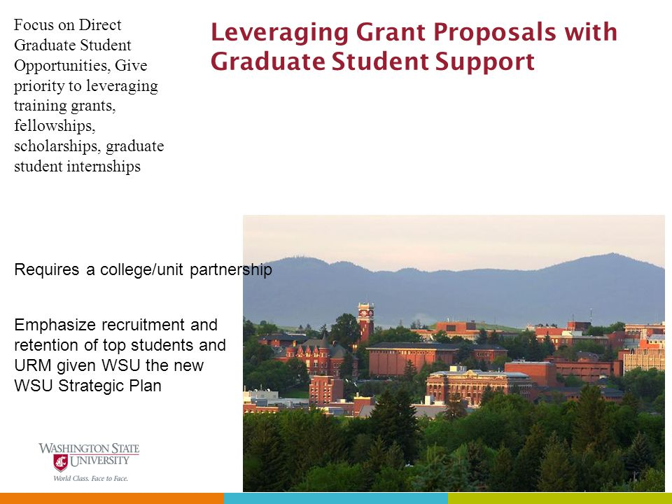 Leveraging Grant Proposals with Graduate Student Support