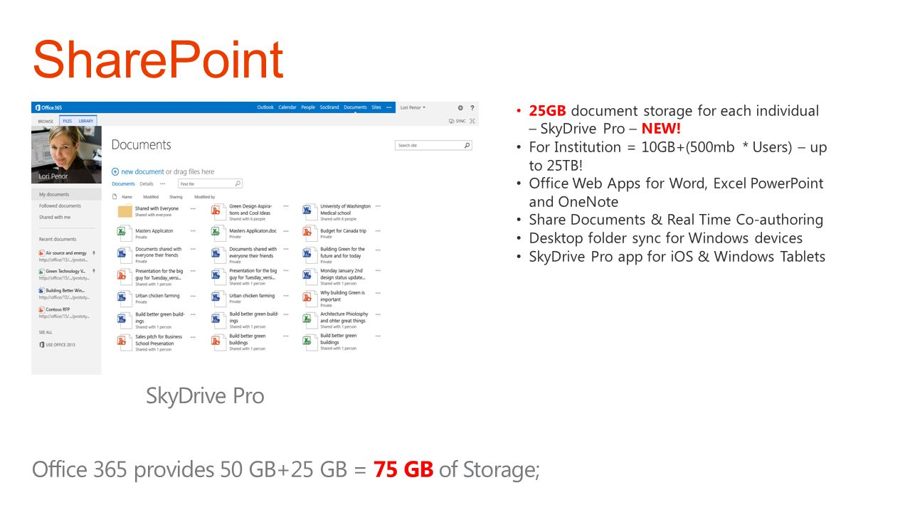 SharePoint SkyDrive Pro