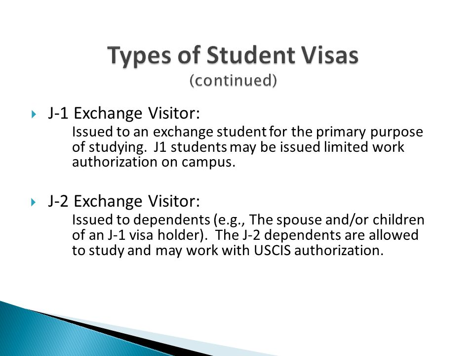 Types of Student Visas (continued)