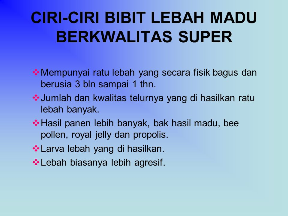 CIRI-CIRI BIBIT LEBAH MADU BERKWALITAS SUPER