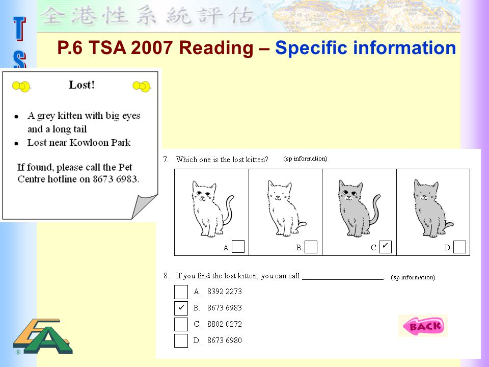 P.6 TSA 2007 Reading – Specific information