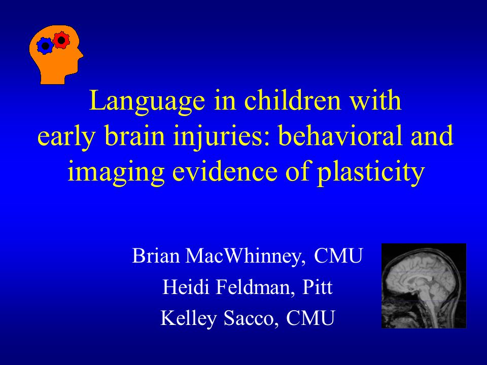Brian MacWhinney, CMU Heidi Feldman, Pitt Kelley Sacco, CMU